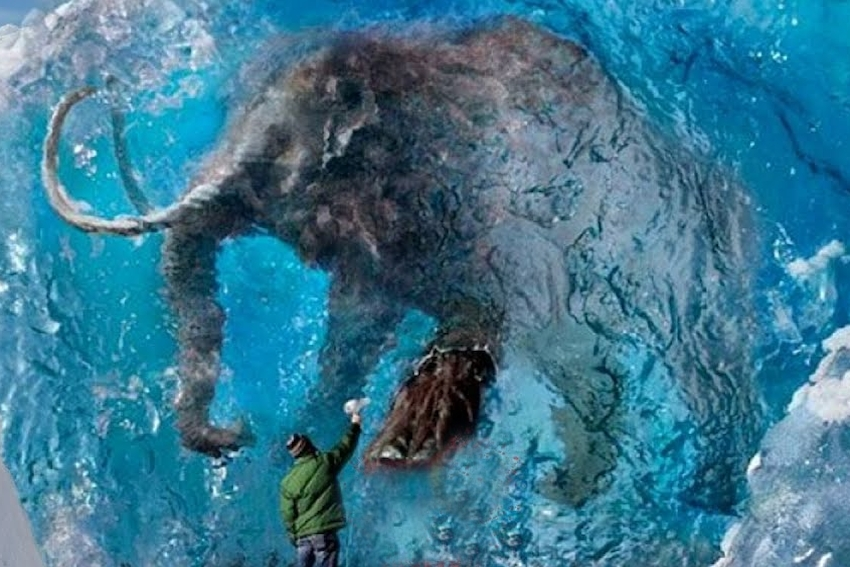 Defrosting a Wooly Mammoth