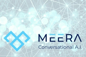 Meera Integrates with VinSolutions